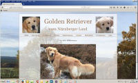 golden-retriever-franken-index